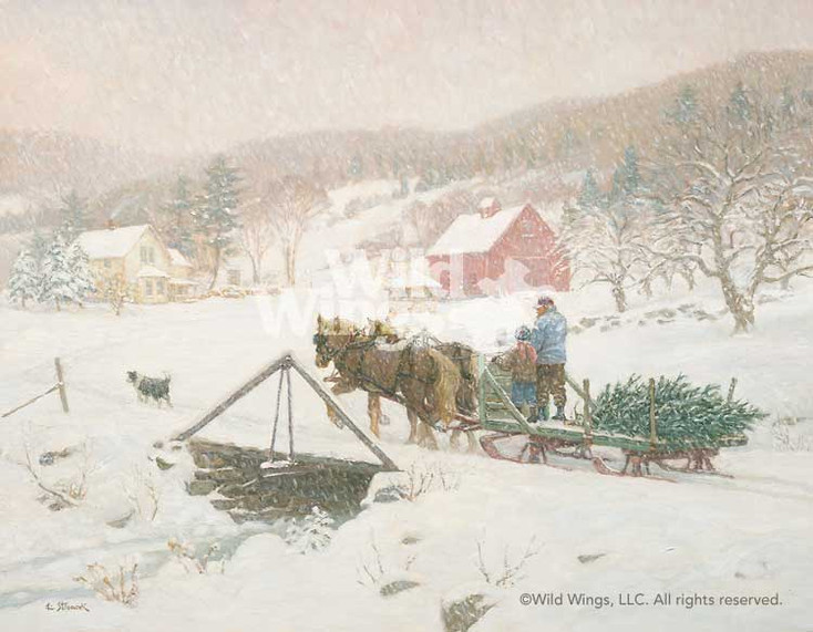 Bringing in the Christmas Tree Limited Edition Wrapped Canvas Giclee Art Print Wall Art