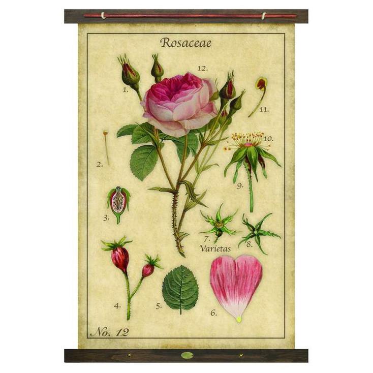 Custom Rose Rosaceae Canvas Tapestry