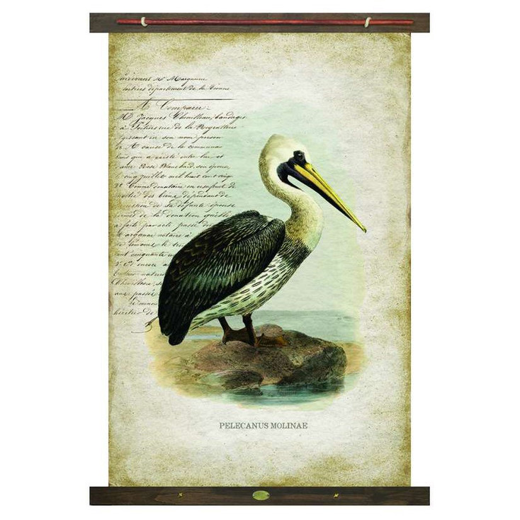 Custom Pelican Bird Pelecanus Molinae Canvas Tapestry