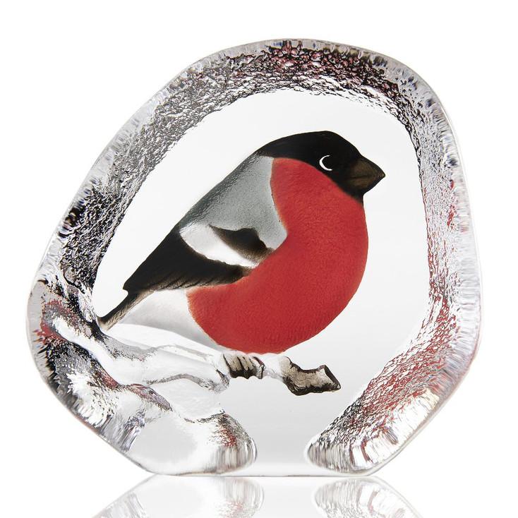 Bullfinch Bird Painted Etched Crystal Sculpture by Mats Jonasson