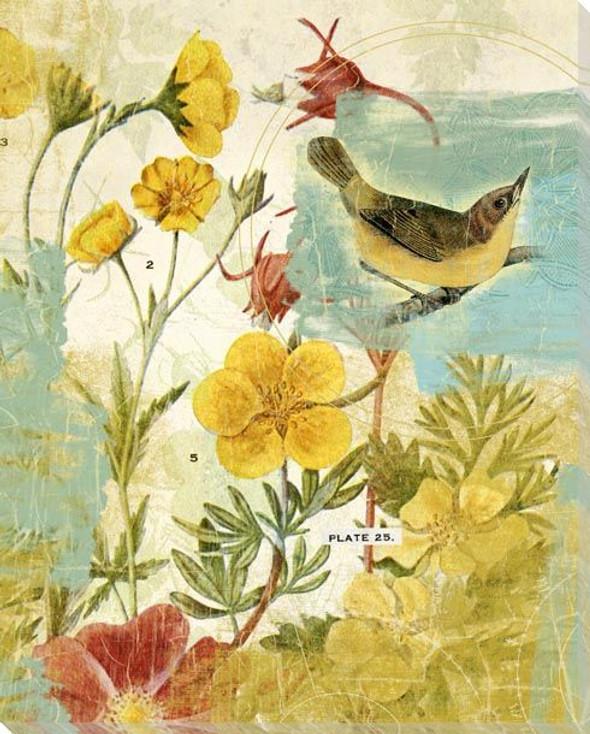 Third Bird in the Garden Wrapped Canvas Giclee Art Print Wall Art