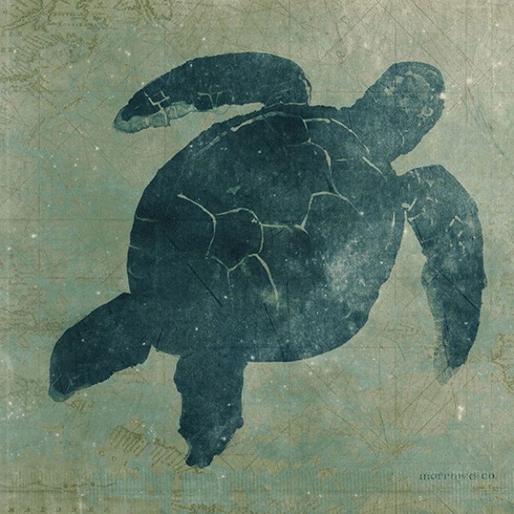 Sea Turtle Vintage Style Wooden Sign