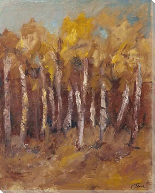 Autumn Aspen Wrapped Canvas Giclee Print Wall Art