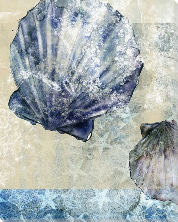 Beachcombing Shell 2 Wrapped Canvas Giclee Print Wall Art