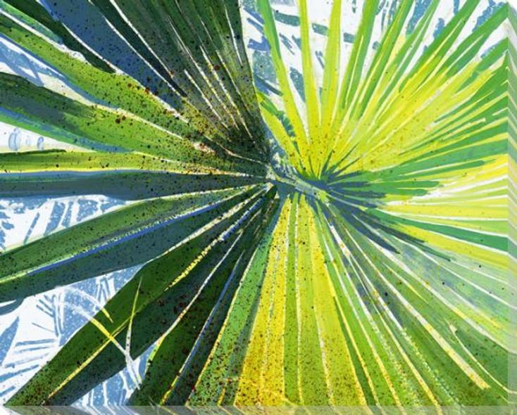 Blackbeard's Palm 6 Wrapped Canvas Giclee Print Wall Art