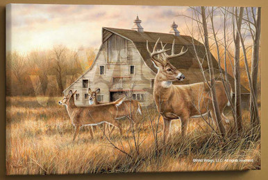 Deserted Farmstead Whitetail Deer Wrapped Canvas Giclee