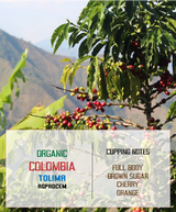 Organic Colombia