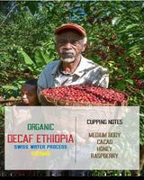 decaf ethiopia sidamo swiss water process coffee