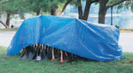 Anchor Products Multiple Use Tarps, 8 ft Long, 6 ft Wide, Polyethylene, Blue Product Image