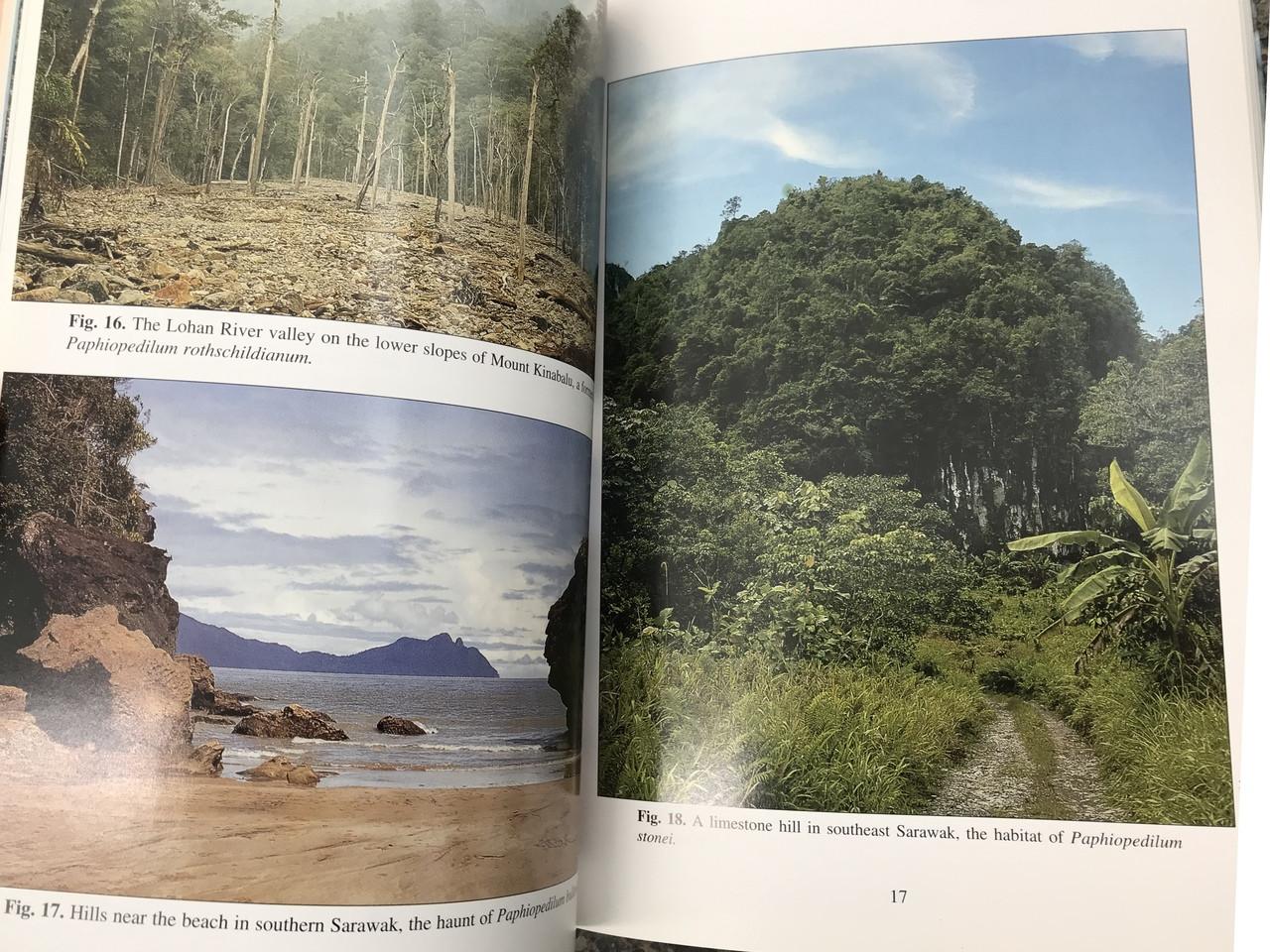 Slipper Orchids of Borneo - Book by Phillip Cribb