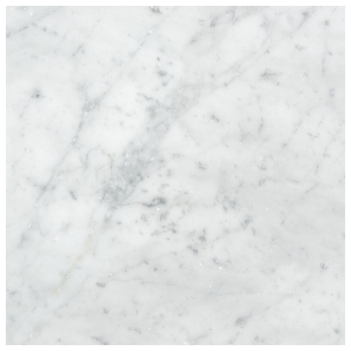 Carrara Marble Italian White Bianco Carrera 24x24 Marble Tile Honed