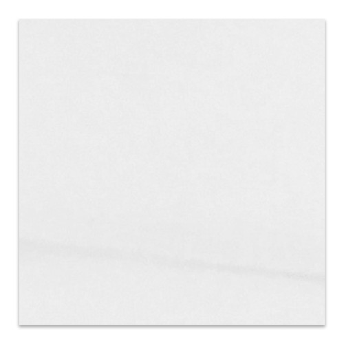 Bianco Dolomite Marble 36x36 Tile Polished