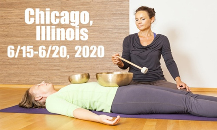 VSA Singing Bowl Vibrational Sound Therapy Certification Course Chicago, Il June 15-20, 2020