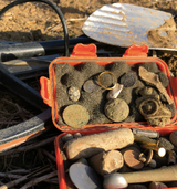 Minelab Equinox 800 Success Stories