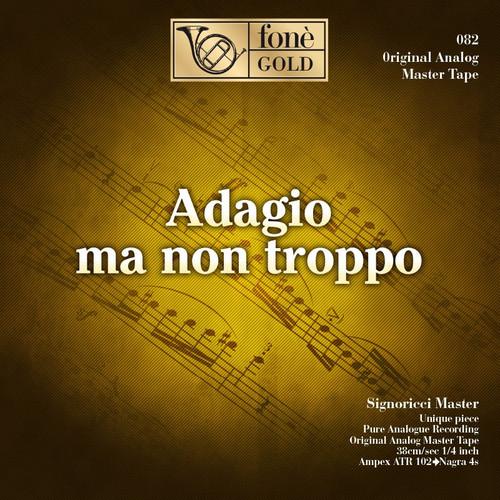 "Classical MASTER TAPE - Adagio ma non troppo - aa.vv. Fonè Records, original cat.# Fonè 082, format 2x 1/4"" RTM SM900 Tape set, Metal reel 10,5""/265mm, NAB Hub, 38 cm/s (15 ips), IEC eq. More info on www.sepeaaudio.com"