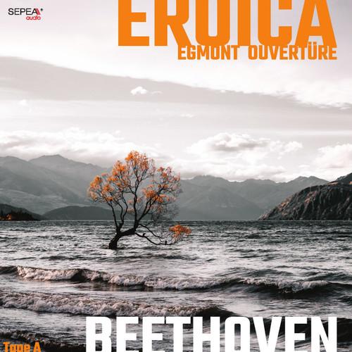 "Sepea Audio Original Master Tape Recording - Beethoven Symphony 3 ""Eroica"" & Overture ""Egmont"", Klangkollektiv Wien, Conductor Rémy Ballot. Find more on www.sepeaaudio.com"
