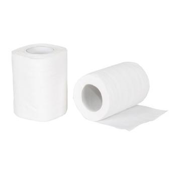 Biodegradable Toilet Tissue - 2 Pack