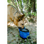 Collapsible - Double Dog Bowl