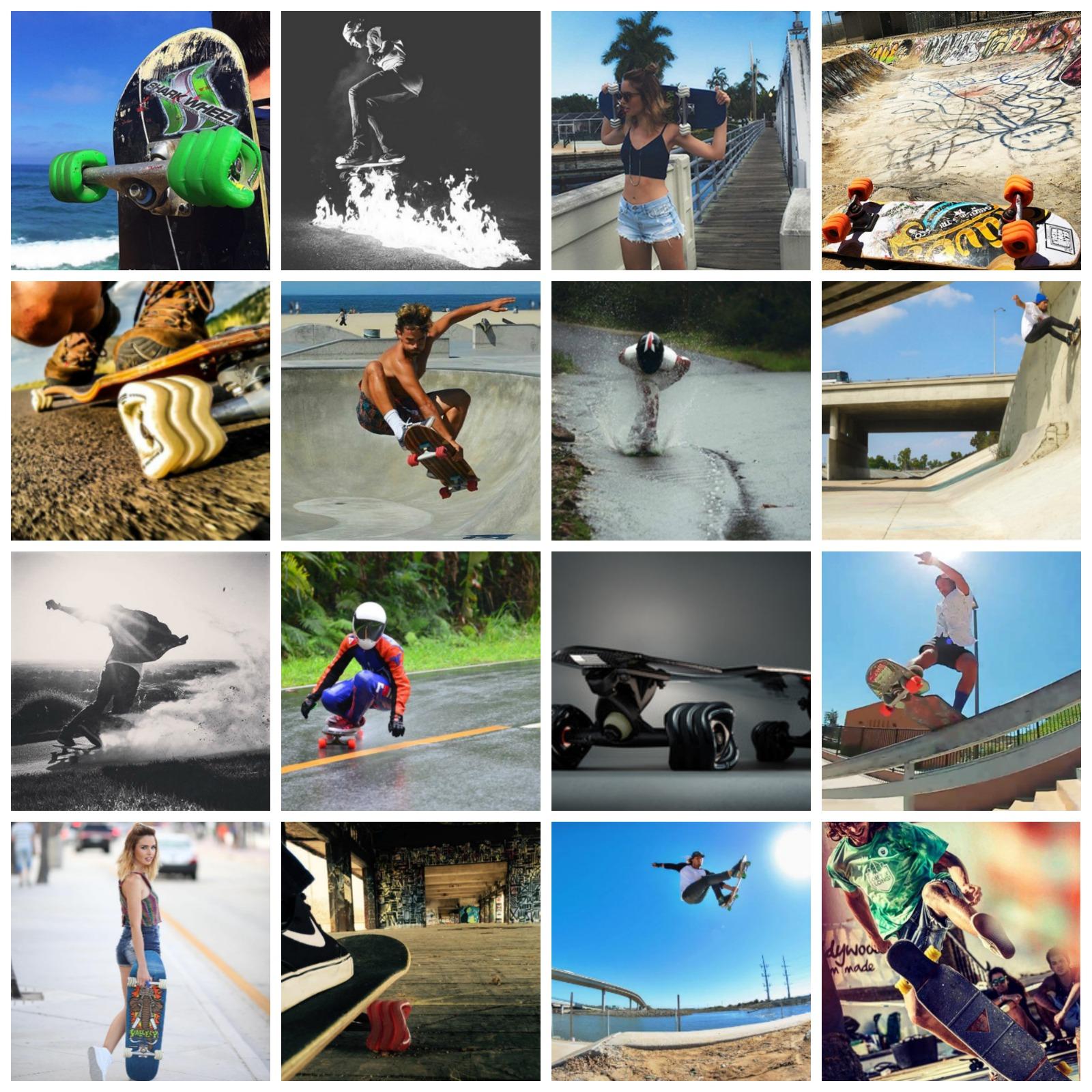 "Fiesta 22"" Skateboard By Shark Wheel (50% Off - Click the Listing)"