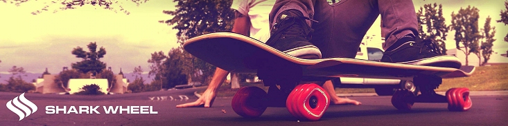 surfskate-header.jpg
