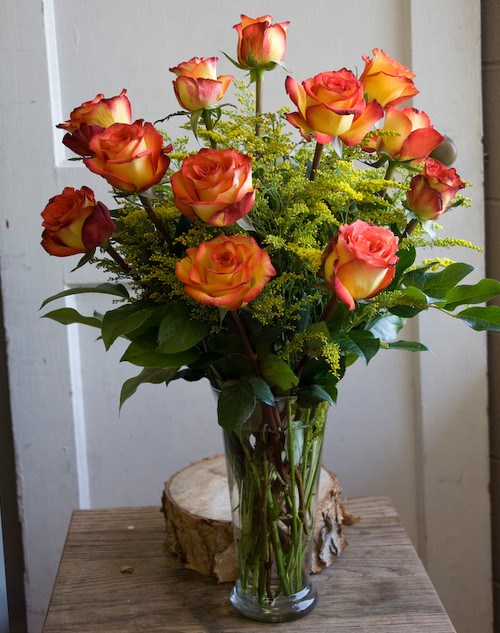 Add a little magic to someone's life with these vibrant and unique roses