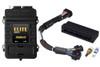 Elite 2000 + Mazda RX7 FD3S-S7&8 Plug 'n' Play Adaptor Harness Kit -Haltech HT-151229