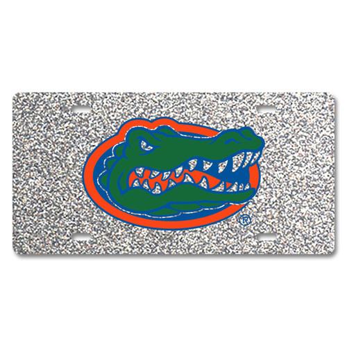Florida Glitter License Plate