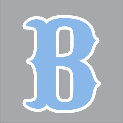 Bruins Decal