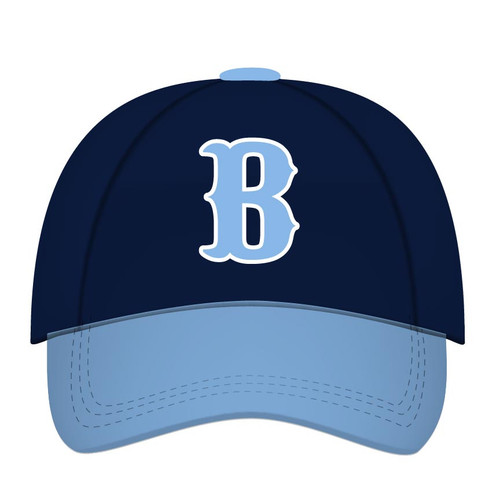 Bruins Hat
