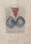 Tagua Doughnut Earrings - Clearance Colors