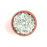 "Top Dressing - Jade Pebbles in 3.0"" pot"