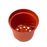 "4.0"" x 3.0"" Plastic Terracotta Pot w/ Drainage Hole (Single)"