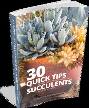 Succulent Books for sale online | Mountain Crest Gardens™