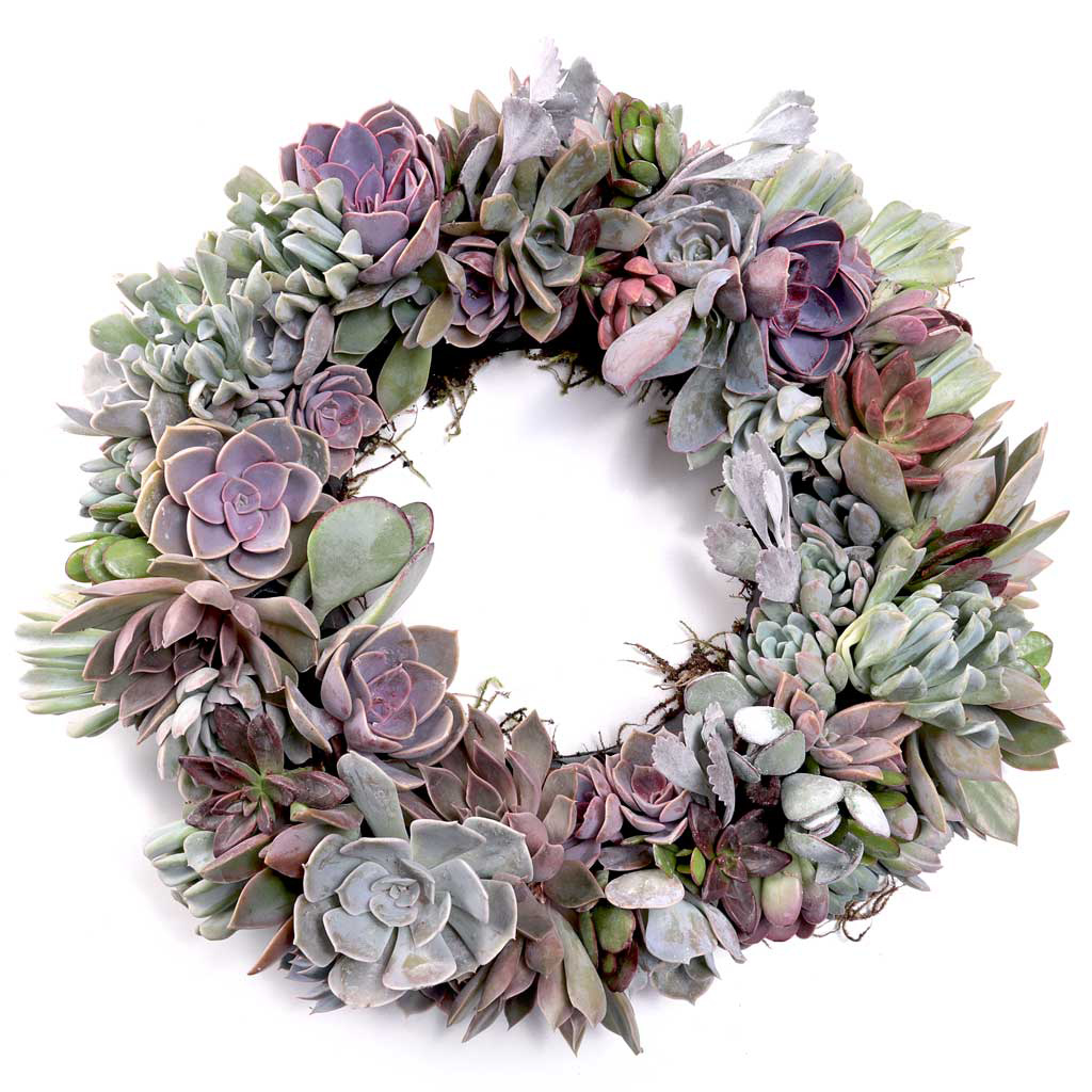 large-plastic-wreath-form-pastel.jpg