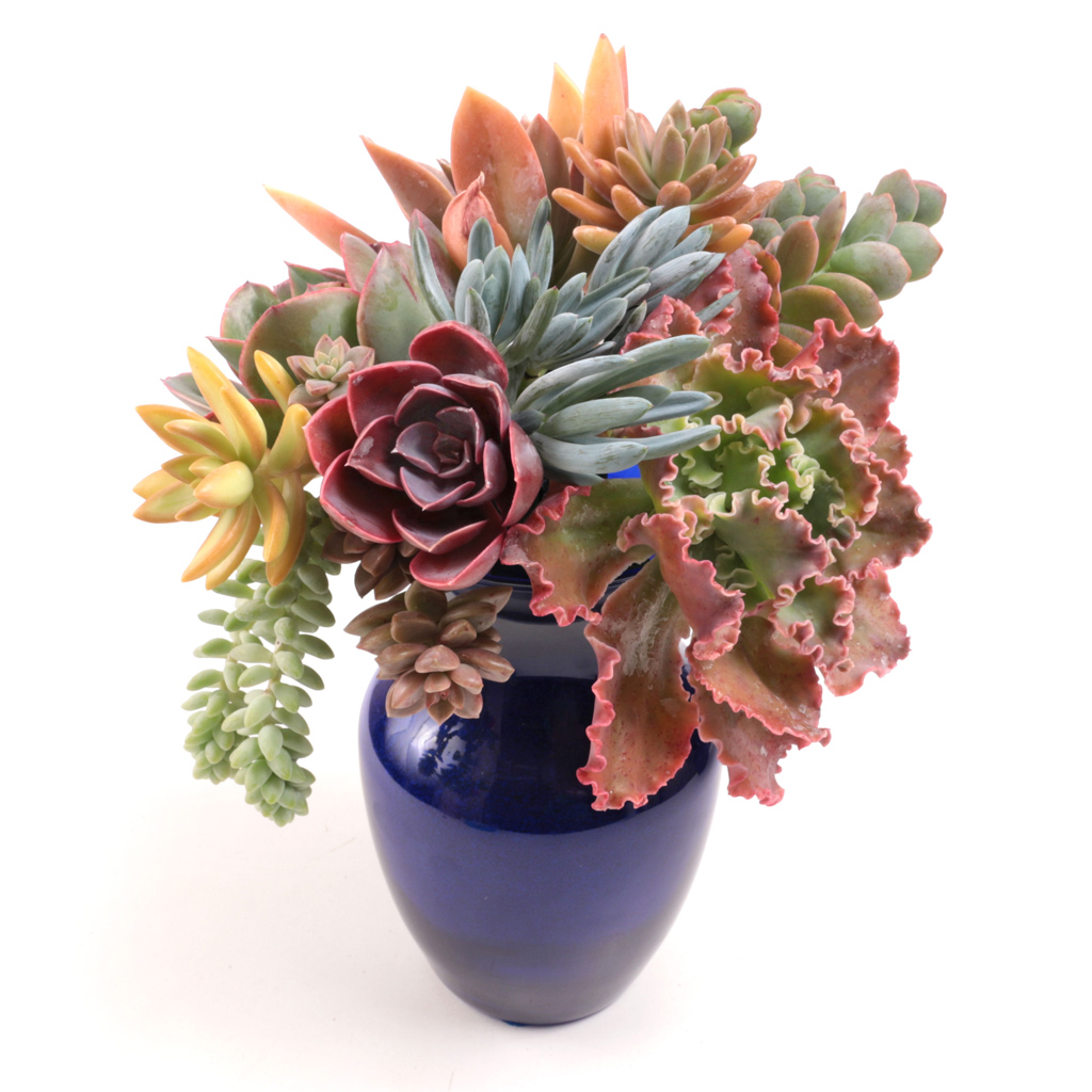 soft-cuttings-bouquet.jpg