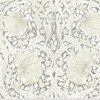 Backing Fabric - Pimpernel - Charcoal
