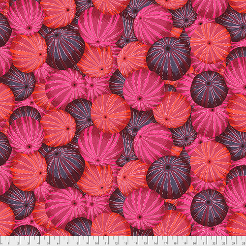 Sea Urchins - Red
