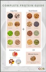 Part 4: Protein