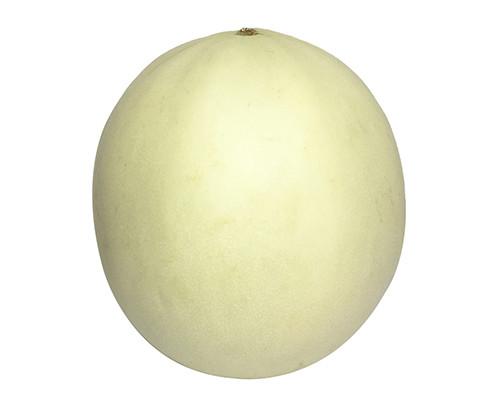 Honeydew Melon - Whole