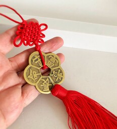 PLUM BLOSSOM COIN FOR GROWTH AND PROSPERITY