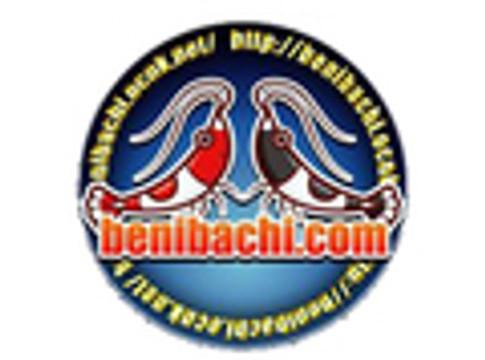 Benibachi