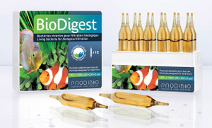 Prodibio Biodigest Pro10