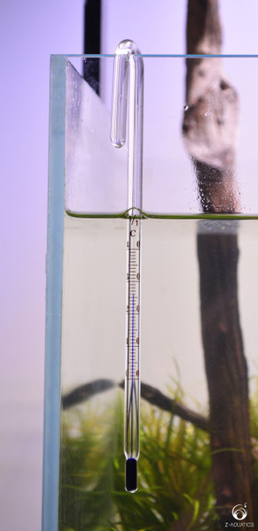 Glass J Thermometer