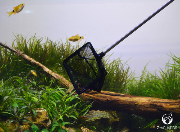 UP-Aqua Special Net