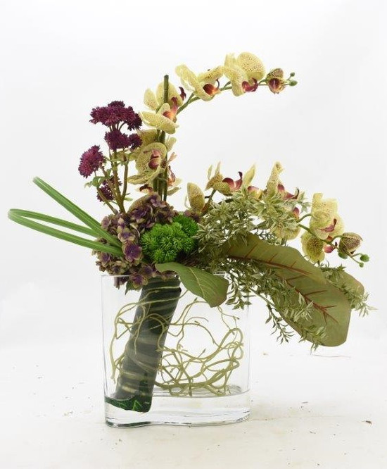 Orchid In Curvy Glass Vase