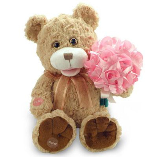 Record A Message Bear Pink Bouquet