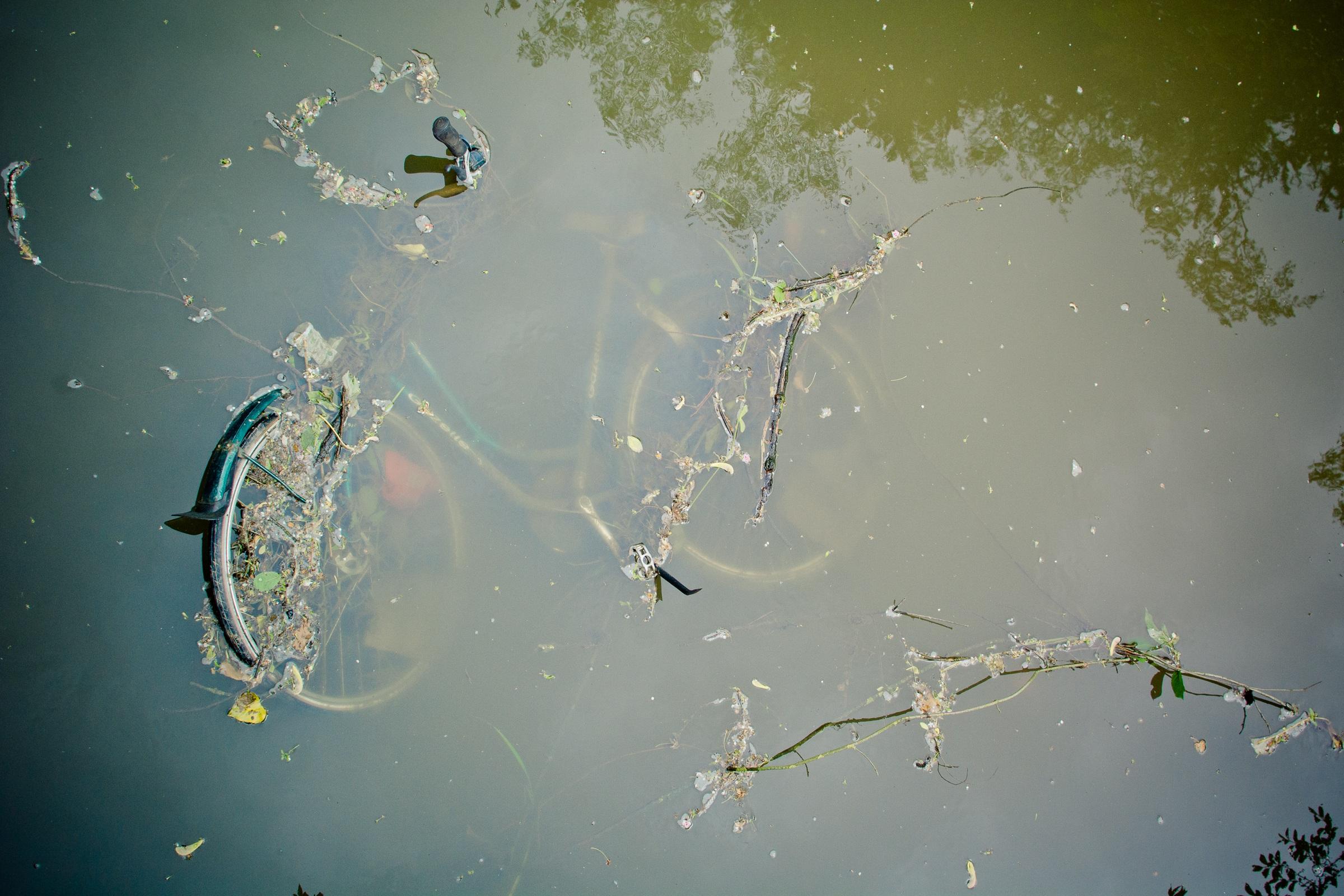 bike-1405209.jpg