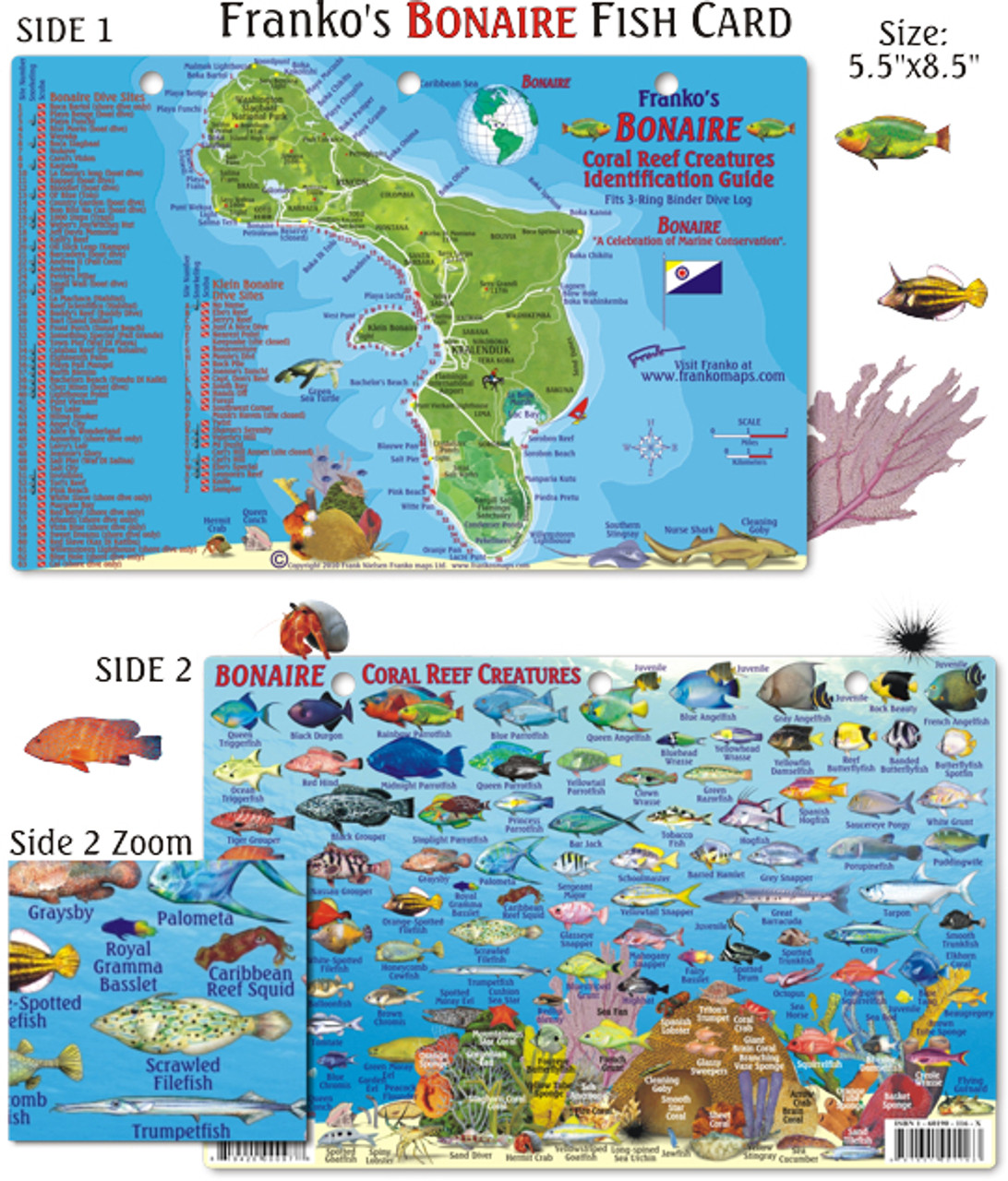 bonaire reef creatures identification guide fish card mail order