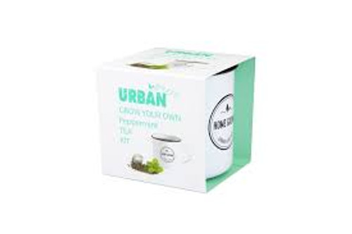 Urban Greens Grown Your Own Tea Peppermint