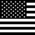 B & W  AMERICAN FLAG LINER